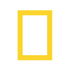 National-Geographic_logo_290