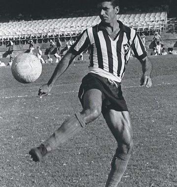 Pelo Botafogo, mais de 700 jogos