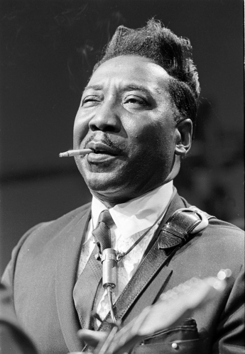 Muddy Waters, 100 anos