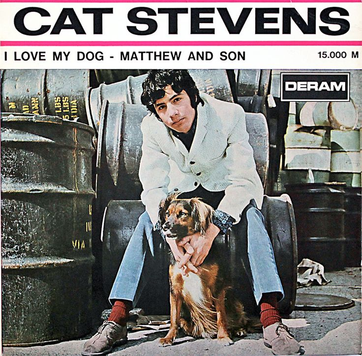 "Cat Stevens lança ""I Love My Dog"", seu primeiro single"